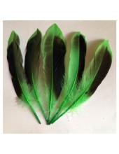 10 шт.  Зеленый цвет. Перья цветной утки 10-15 см.