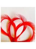 20 шт. Красный цвет. Гусиное перо 13-18 см. Волосок
