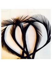 10 шт. Черный цвет. Гусиное перо 13-18 см. Волосок