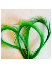 10 шт. Зеленый цвет. Гусиное перо 13-18 см. Волосок