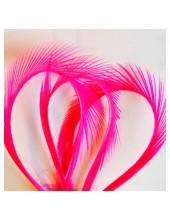 10 шт. Фуксия цвет. Гусиное перо 13-18 см. Волосок