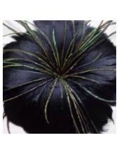 1 шт. Черный цвет. Цветок из перьев птиц