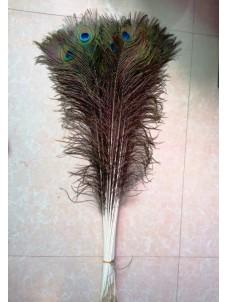 Перо павлина 70-80 см