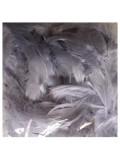 100 шт. Серый цвет. Гусиное перо 4-9 см. Плавающее