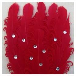 Красный цвет. Заколка брошь из перьев птиц