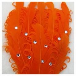 Оранжевый цвет. Заколка брошь из перьев птиц
