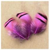 10 шт. Розовый цвет. Перья фазана 3-6 см. Цветное перо