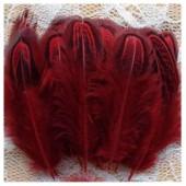 20 шт. Красный цвет. Фазан цветное перо 4-7 см