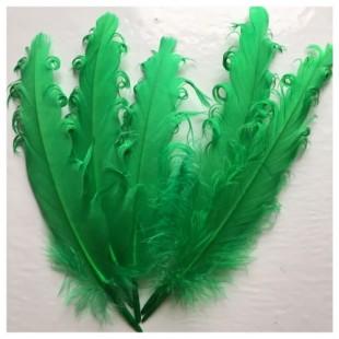 20 шт. Нефрит цвет. Гусиное перо 12-16 см. Кудри