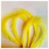 20 шт. Желтый цвет. Гусиное перо 13-18 см. Волосок