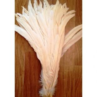 1 шт. Молочный цвет. Перья петуха 30-35 см. Цветное
