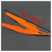 1 шт. Оранжевый цвет.  Гусиное перо 30-40 см.