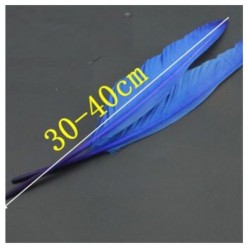1 шт. Голубой цвет.  Гусиное перо 30-40 см.