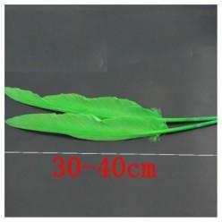1 шт. Зеленый цвет.  Гусиное перо 30-40 см.