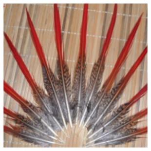 774. 1 шт. Перья фазана 6-8 см