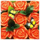 9 Роз в подарочной коробочке. Оранжевый цвет.
