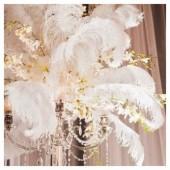 1 шт. Белый цвет. Перья страуса 45-50 см. Экстра класс
