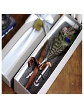 Ф-2. Ручка с чернилами перо птиц