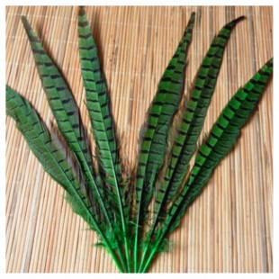 1 шт. Зеленый цвет. Перья фазана 30-35 см