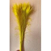 1 шт. Желтый  цвет. Перо павлина 80-90 см