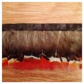902. 0.5 м. Перья фазана на ленте 4-5 см