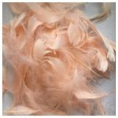 100 шт. Бежевый цвет. Гусиное перо 4-9 см. Плавающее