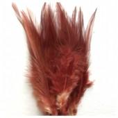 20 шт. Шоколад цвет. Перья петуха 5-10 см. Цветные перья