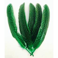 10 шт. Зеленый с черным цвет. Перья фазана 15-20 см. В крапинку