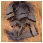 10 шт. Серый цвет. Перья фазана 3-6 см. Цветное перо