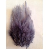 20 шт. Серый цвет. Перья петуха. Цветное 10-15 см.