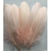 20 шт. Бежевый цвет. Перья петуха 10-15 см