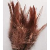 20 шт. 20 шт. Какао цвет. Перья петуха 11-15 см. 2-х цветное