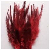 20 шт. Красный цвет. Перья петуха 5-10 см. Цветные перья