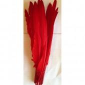 1 шт. Красный цвет. Гусиное перо 30-40 см