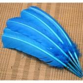 1 шт. Голубой цвет. Гусиное перо 25-30 см
