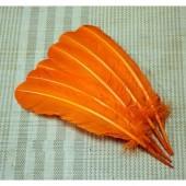 1 шт. Оранжевый цвет. Гусиное перо 25-30 см