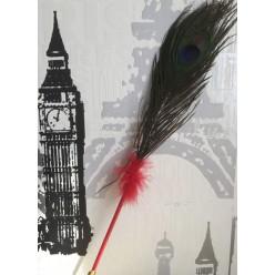 В-2. Красный цвет. Ручка с перьями павлина