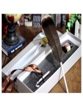 Ф-1.  Ручка с чернилами перо птиц