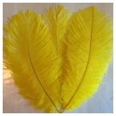 1 шт. Желтый цвет. Перо страуса 15-20 см
