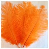 1 шт. Оранжевый цвет. Перо страуса 15-20 см