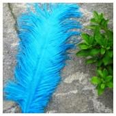 1 шт. Морская волна цвет. Перо страуса 20-25 см