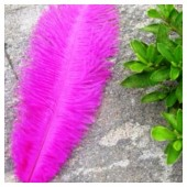 1 шт. Фуксия цвет. Перо страуса 20-25 см