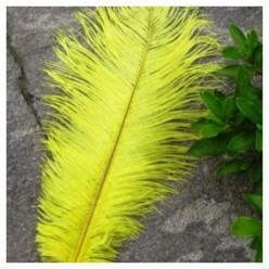 1 шт. Желтый цвет. Перо страуса 20-25 см