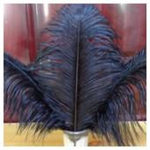 1 шт. Черный цвет. Перо страуса 30-35 см