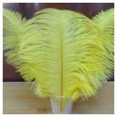 1 шт. Желтый цвет. Перо страуса 30-35 см