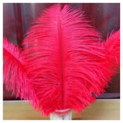 1 шт. Красный цвет. Перо страуса 30-35 см
