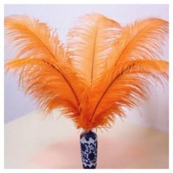 1 шт. Оранжевый цвет. перо страуса 30-35 см.