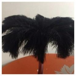 1 шт. Черный цвет. Перо страуса 35-40 см
