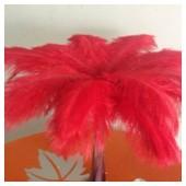 1 шт. Красный цвет. Перо страуса 35-40 см