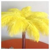1 шт. Желтый цвет. Перо страуса 35-40 см